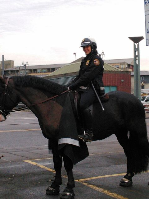 Thank you mounted police. pdx.