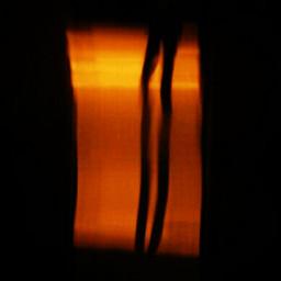 luminography train legs