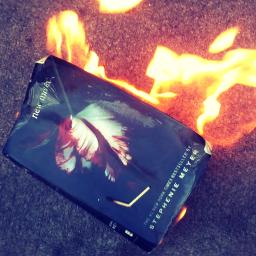 twilight fire flame burning