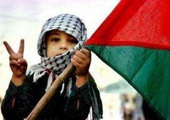 palestine freedom