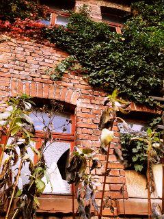 retro photography house