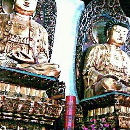 travel budismo shanghai china