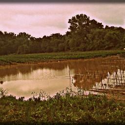 summer photography nature floods farm crops