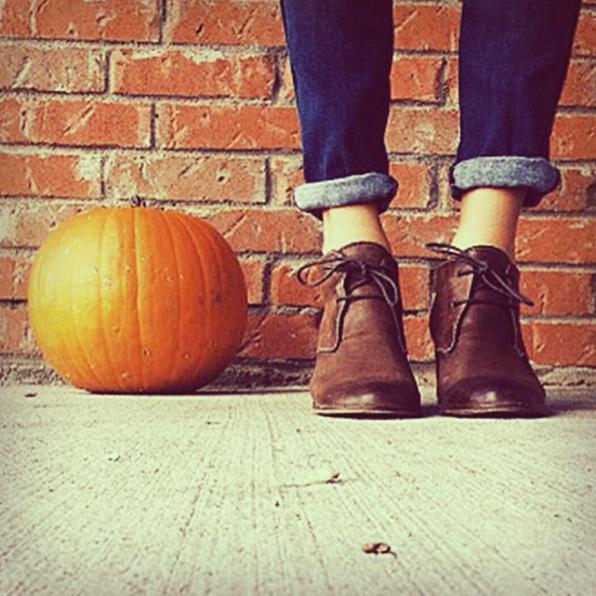 pumpkin photography contest