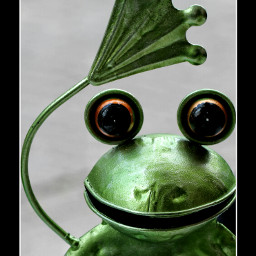 justcametosayhello decorating frog wppgreen