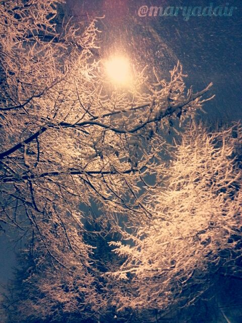 pictures of snow