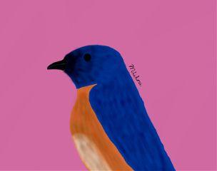 cute colorful drawing love original bird