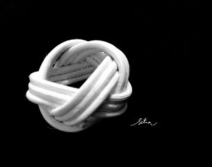 black & white macro popart photography vintage