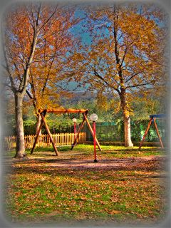 autumn baby nature park people